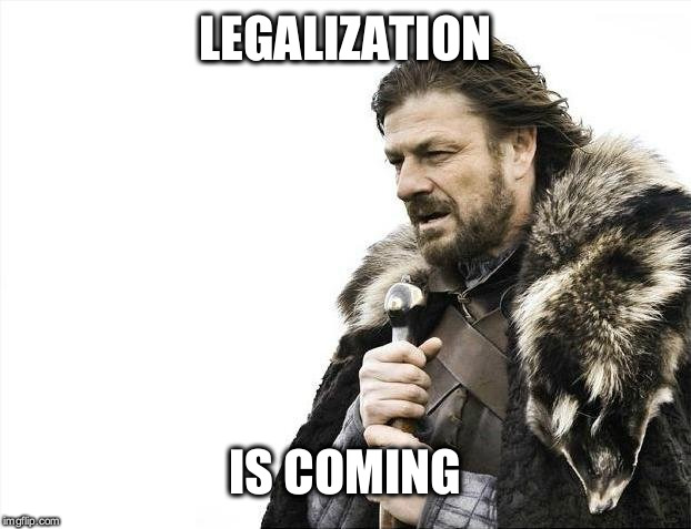 Brace Yourselves X is Coming Meme | LEGALIZATION IS COMING | image tagged in memes,brace yourselves x is coming | made w/ Imgflip meme maker