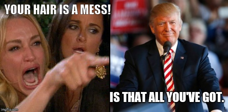 YOUR HAIR IS A MESS! IS THAT ALL YOU'VE GOT. | image tagged in trump hair meme | made w/ Imgflip meme maker