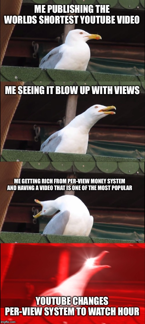 Inhaling Seagull Meme | ME PUBLISHING THE WORLDS SHORTEST YOUTUBE VIDEO ME SEEING IT BLOW UP WITH VIEWS ME GETTING RICH FROM PER-VIEW MONEY SYSTEM AND HAVING A VIDE | image tagged in memes,inhaling seagull | made w/ Imgflip meme maker