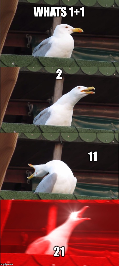 Inhaling Seagull Meme | WHATS 1+1 2 11 21 | image tagged in memes,inhaling seagull | made w/ Imgflip meme maker