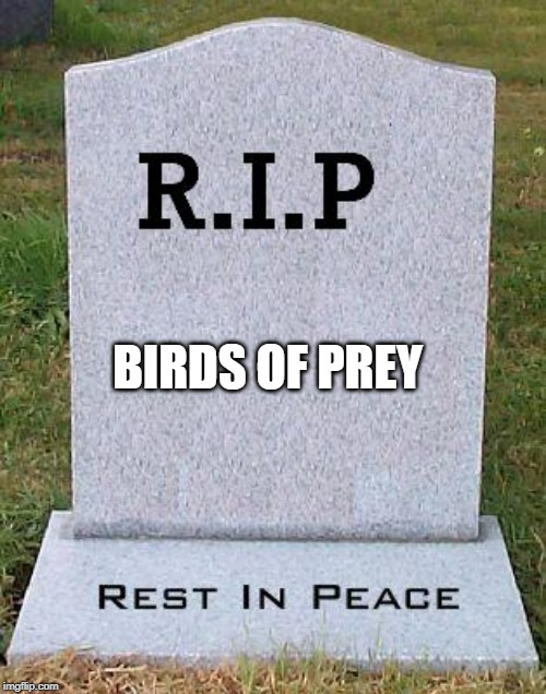 RIP headstone | BIRDS OF PREY | image tagged in rip headstone | made w/ Imgflip meme maker