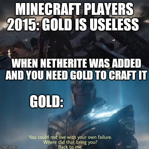 Thanos you could not live with your own failure | MINECRAFT PLAYERS 2015: GOLD IS USELESS WHEN NETHERITE WAS ADDED AND YOU NEED GOLD TO CRAFT IT GOLD: | image tagged in thanos you could not live with your own failure | made w/ Imgflip meme maker