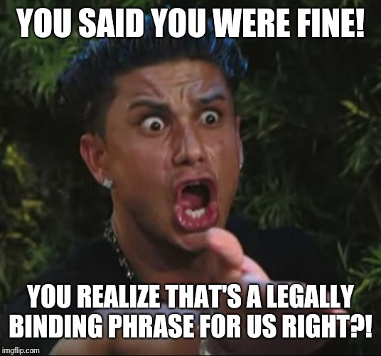 DJ Pauly D Meme | YOU SAID YOU WERE FINE! YOU REALIZE THAT'S A LEGALLY BINDING PHRASE FOR US RIGHT?! | image tagged in memes,dj pauly d | made w/ Imgflip meme maker