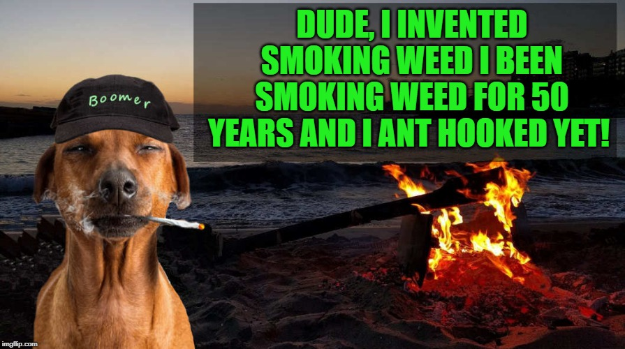 boomer says by kewlew | DUDE, I INVENTED SMOKING WEED I BEEN SMOKING WEED FOR 50 YEARS AND I ANT HOOKED YET! | image tagged in boomer says by kewlew | made w/ Imgflip meme maker