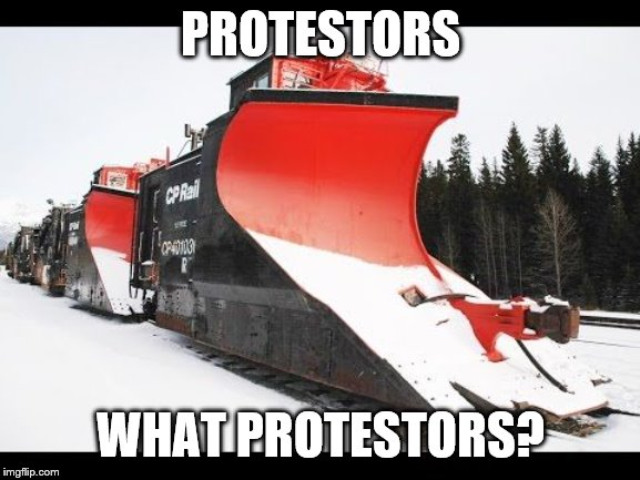 PROTESTORS; WHAT PROTESTORS? | image tagged in protest,idiots | made w/ Imgflip meme maker