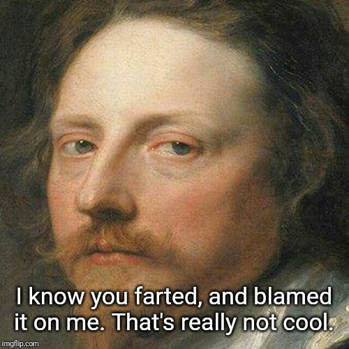 Classic Art Portrait | I know you farted, and blamed it on me. That's really not cool. | image tagged in classic art portrait,memes | made w/ Imgflip meme maker