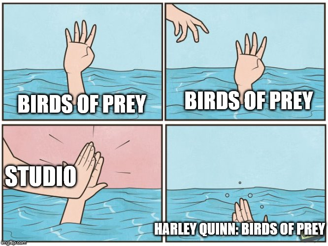 High five drown |  BIRDS OF PREY; BIRDS OF PREY; STUDIO; HARLEY QUINN: BIRDS OF PREY | image tagged in high five drown,birds of prey,harley quinn,thanks for nothing | made w/ Imgflip meme maker
