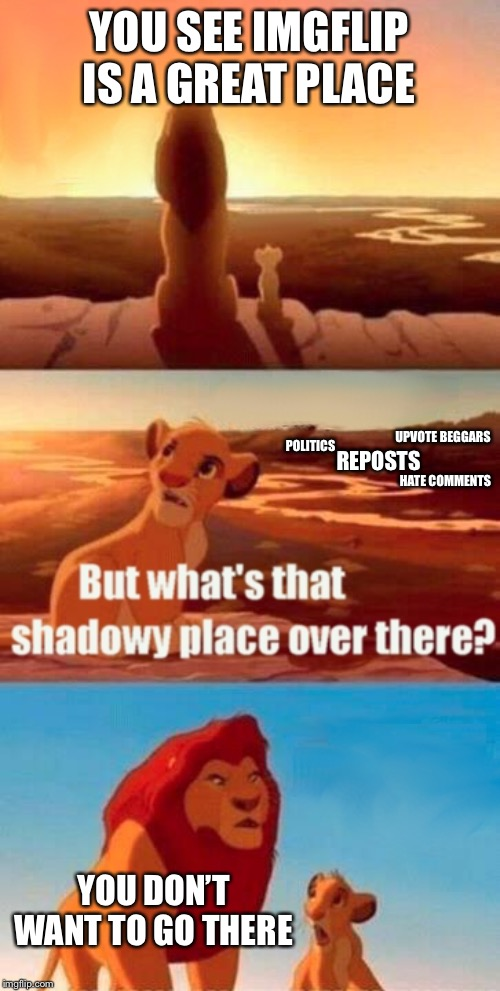 The good and the bad | YOU SEE IMGFLIP IS A GREAT PLACE YOU DON'T WANT TO GO THERE UPVOTE BEGGARS REPOSTS POLITICS HATE COMMENTS | image tagged in memes,simba shadowy place,imgflip | made w/ Imgflip meme maker