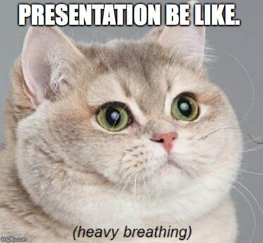 Heavy Breathing Cat | PRESENTATION BE LIKE. | image tagged in memes,heavy breathing cat | made w/ Imgflip meme maker