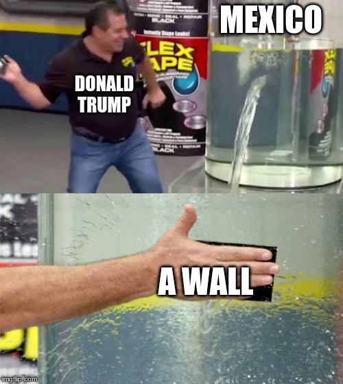 Flex Tape | MEXICO A WALL DONALD TRUMP | image tagged in flex tape | made w/ Imgflip meme maker