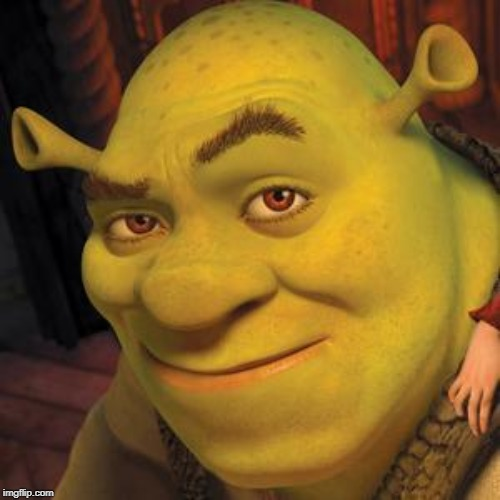 image tagged in shrek sexy face | made w/ Imgflip meme maker