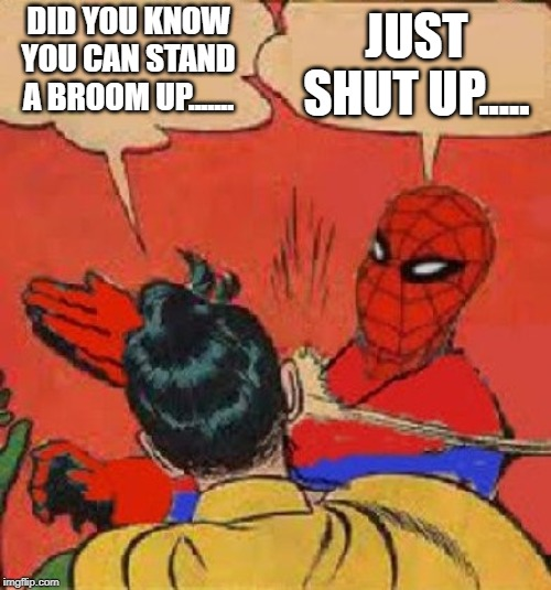 Spiderman Slapping Robin | DID YOU KNOW YOU CAN STAND A BROOM UP....... JUST SHUT UP..... | image tagged in spiderman slapping robin | made w/ Imgflip meme maker