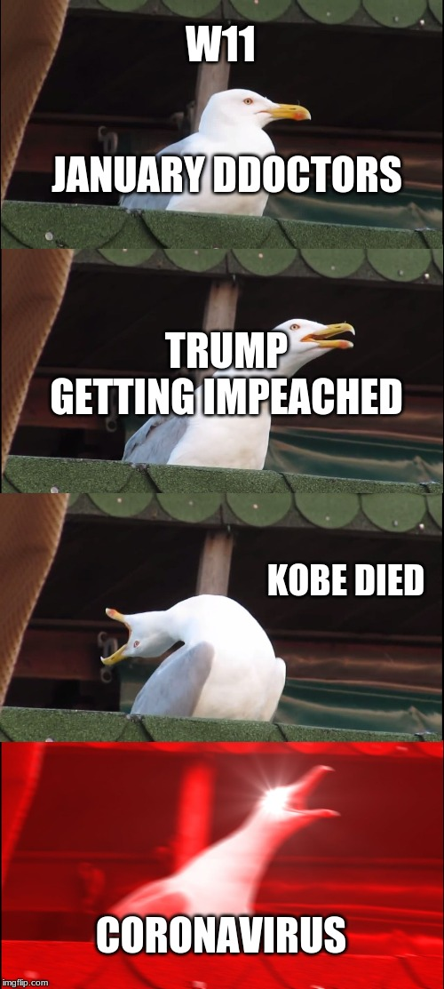 Inhaling Seagull Meme | W11 JANUARY DDOCTORS KOBE DIED CORONAVIRUS TRUMP GETTING IMPEACHED | image tagged in memes,inhaling seagull | made w/ Imgflip meme maker