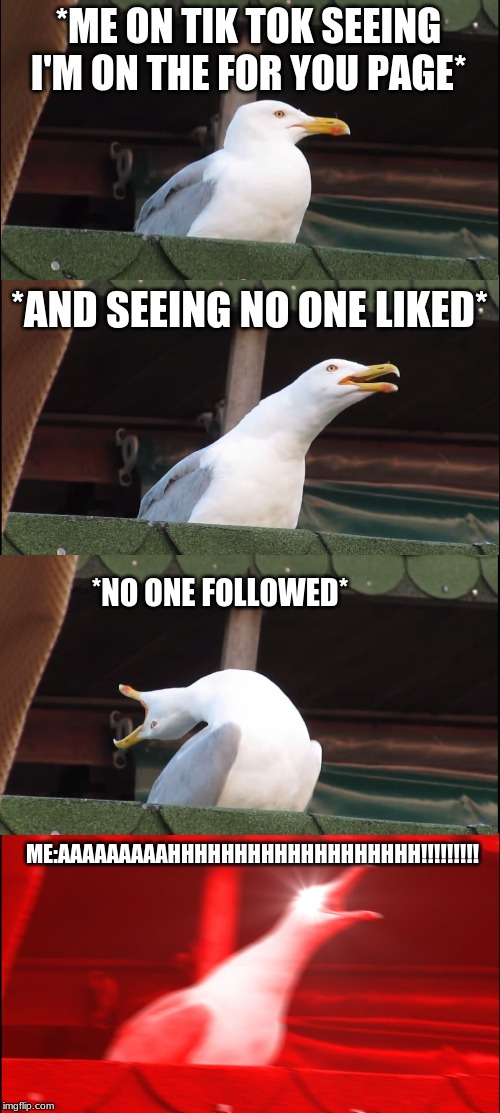 Inhaling Seagull Meme | *ME ON TIK TOK SEEING I'M ON THE FOR YOU PAGE* *AND SEEING NO ONE LIKED* *NO ONE FOLLOWED* ME:AAAAAAAAAHHHHHHHHHHHHHHHHHHH!!!!!!!!! | image tagged in memes,inhaling seagull | made w/ Imgflip meme maker