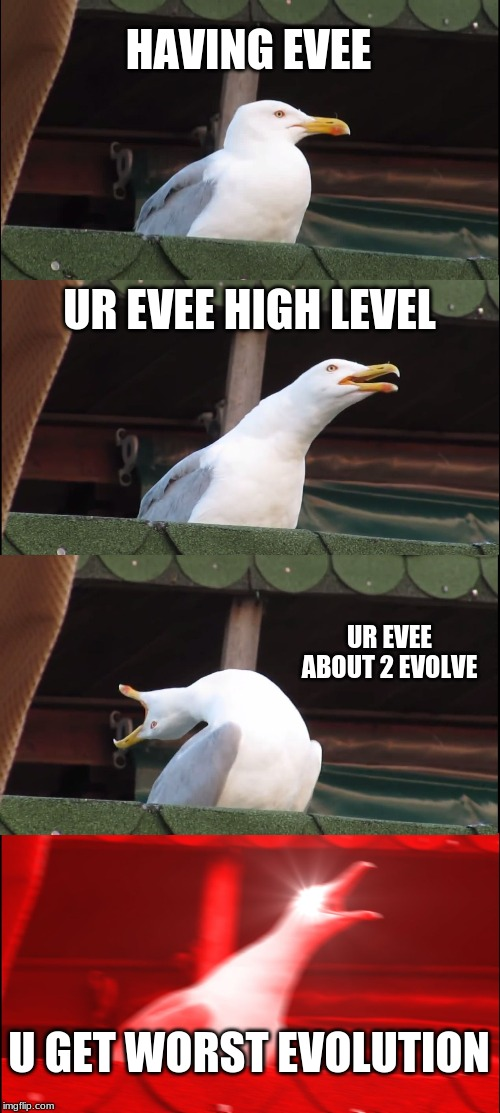 Inhaling Seagull |  HAVING EVEE; UR EVEE HIGH LEVEL; UR EVEE ABOUT 2 EVOLVE; U GET WORST EVOLUTION | image tagged in memes,inhaling seagull | made w/ Imgflip meme maker