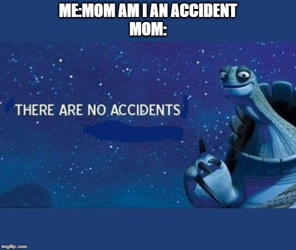 There are no accidents | ME:MOM AM I AN ACCIDENTMOM: | image tagged in there are no accidents | made w/ Imgflip meme maker