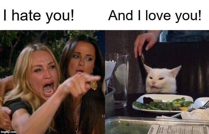 Woman Yelling At Cat |  I hate you! And I love you! | image tagged in memes,woman yelling at cat | made w/ Imgflip meme maker