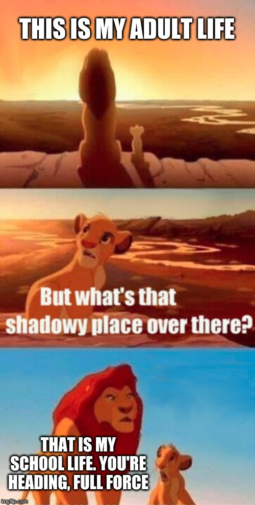 Simba Shadowy Place Meme | THIS IS MY ADULT LIFE THAT IS MY SCHOOL LIFE. YOU'RE HEADING, FULL FORCE | image tagged in memes,simba shadowy place | made w/ Imgflip meme maker