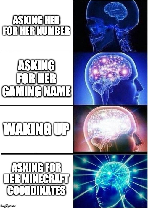 Expanding Brain Meme |  ASKING HER FOR HER NUMBER; ASKING FOR HER GAMING NAME; WAKING UP; ASKING FOR HER MINECRAFT COORDINATES | image tagged in memes,expanding brain | made w/ Imgflip meme maker