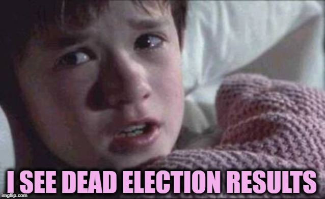 I See Dead People Meme | I SEE DEAD ELECTION RESULTS | image tagged in memes,i see dead people | made w/ Imgflip meme maker