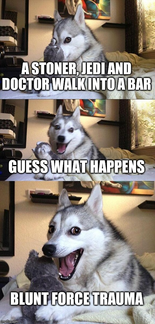 Bad Pun Dog Meme | A STONER, JEDI AND DOCTOR WALK INTO A BAR GUESS WHAT HAPPENS BLUNT FORCE TRAUMA | image tagged in memes,bad pun dog | made w/ Imgflip meme maker