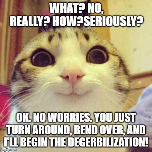 Smiling Cat Meme | WHAT? NO, REALLY? HOW?SERIOUSLY? OK. NO WORRIES. YOU JUST TURN AROUND, BEND OVER, AND I'LL BEGIN THE DEGERBILIZATION! | image tagged in memes,smiling cat | made w/ Imgflip meme maker