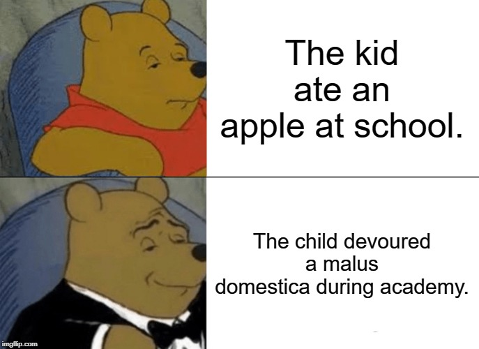 Tuxedo Winnie The Pooh Meme | The kid ate an apple at school. The child devoured a malus domestica during academy. | image tagged in memes,tuxedo winnie the pooh | made w/ Imgflip meme maker