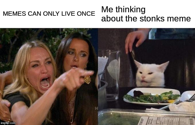 Woman Yelling At Cat Meme |  MEMES CAN ONLY LIVE ONCE; Me thinking about the stonks meme | image tagged in memes,woman yelling at cat | made w/ Imgflip meme maker