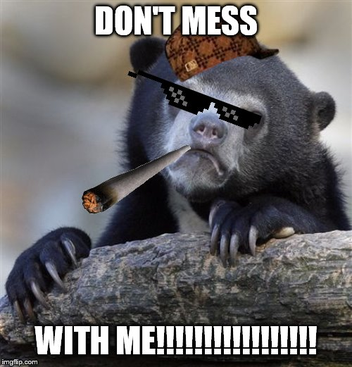 Confession Bear | DON'T MESS WITH ME!!!!!!!!!!!!!!!!! | image tagged in memes,confession bear | made w/ Imgflip meme maker