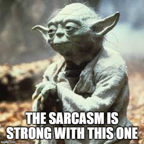 THE SARCASM IS STRONG WITH THIS ONE | image tagged in fun | made w/ Imgflip meme maker