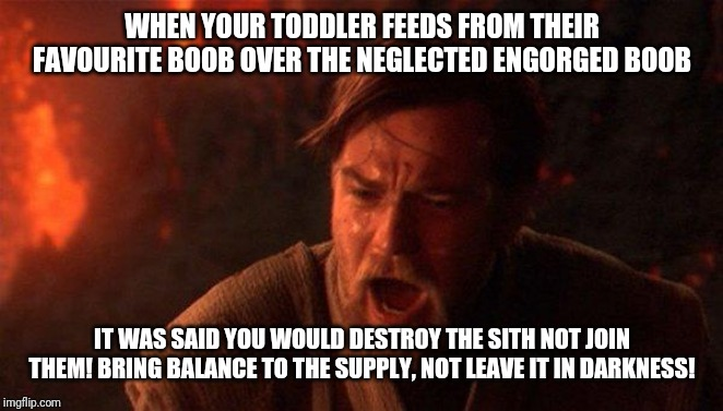 You Were The Chosen One (Star Wars) Meme | WHEN YOUR TODDLER FEEDS FROM THEIR FAVOURITE BOOB OVER THE NEGLECTED ENGORGED BOOB IT WAS SAID YOU WOULD DESTROY THE SITH NOT JOIN THEM! BRI | image tagged in memes,you were the chosen one star wars,breastfeeding | made w/ Imgflip meme maker