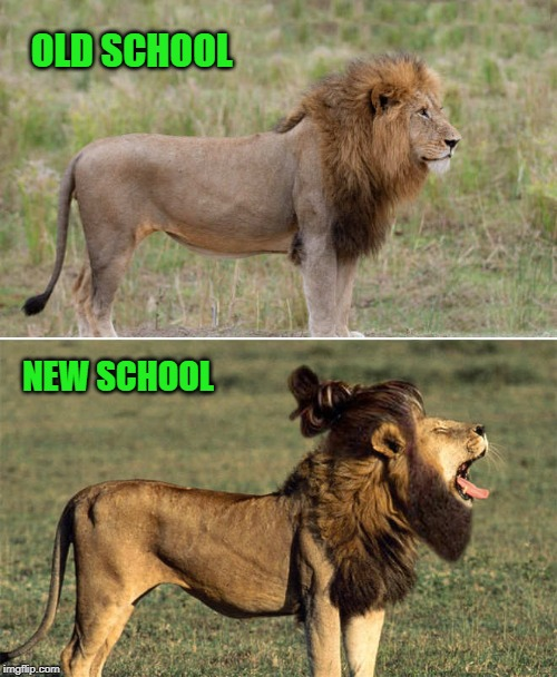 the times are a changing |  OLD SCHOOL; NEW SCHOOL | image tagged in old school,new school,lion,kewlew | made w/ Imgflip meme maker
