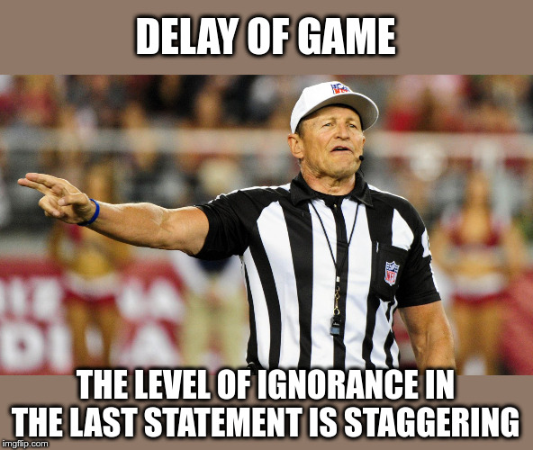 Logical Fallacy Referee |  DELAY OF GAME; THE LEVEL OF IGNORANCE IN THE LAST STATEMENT IS STAGGERING | image tagged in logical fallacy referee | made w/ Imgflip meme maker