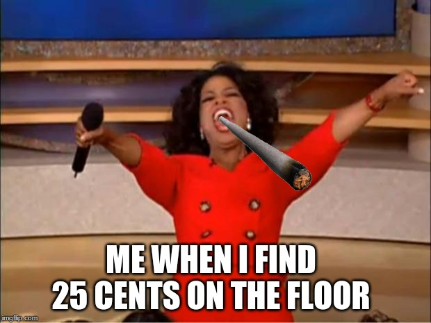 Oprah You Get A Meme | ME WHEN I FIND 25 CENTS ON THE FLOOR | image tagged in memes,oprah you get a | made w/ Imgflip meme maker