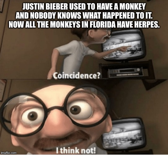 Damn you justin | JUSTIN BIEBER USED TO HAVE A MONKEY AND NOBODY KNOWS WHAT HAPPENED TO IT. NOW ALL THE MONKEYS IN FLORIDA HAVE HERPES. | image tagged in justin bieber,monkey | made w/ Imgflip meme maker