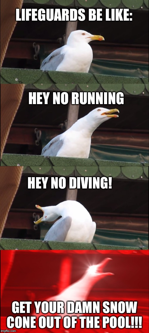 Inhaling Seagull Meme | LIFEGUARDS BE LIKE: HEY NO RUNNING HEY NO DIVING! GET YOUR DAMN SNOW CONE OUT OF THE POOL!!! | image tagged in memes,inhaling seagull | made w/ Imgflip meme maker