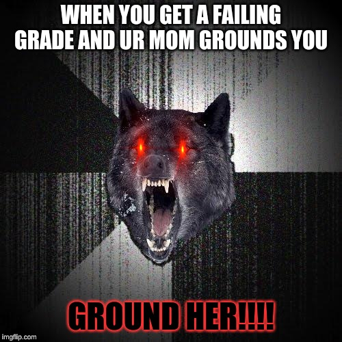 Insanity Wolf | WHEN YOU GET A FAILING GRADE AND UR MOM GROUNDS YOU GROUND HER!!!! | image tagged in memes,insanity wolf | made w/ Imgflip meme maker