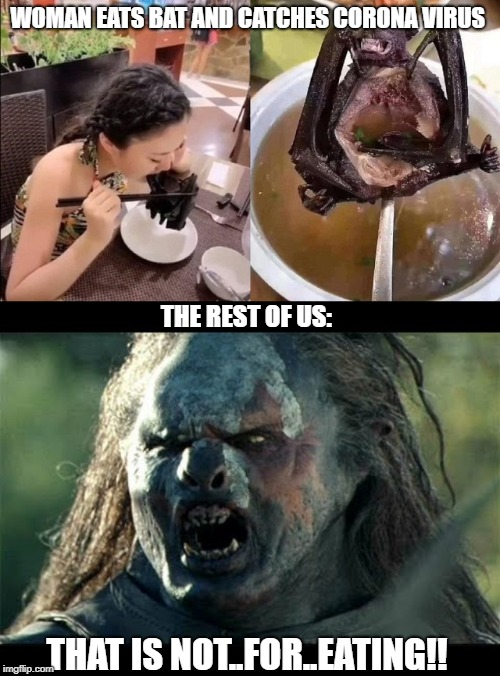 Not For Eating!! | WOMAN EATS BAT AND CATCHES CORONA VIRUS THE REST OF US: THAT IS NOT..FOR..EATING!! | image tagged in coronavirus,gross,chinese | made w/ Imgflip meme maker