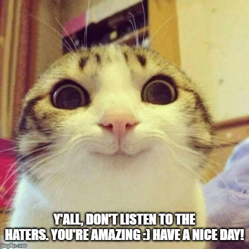 Smiling Cat Meme | Y'ALL, DON'T LISTEN TO THE HATERS. YOU'RE AMAZING :) HAVE A NICE DAY! | image tagged in memes,smiling cat | made w/ Imgflip meme maker