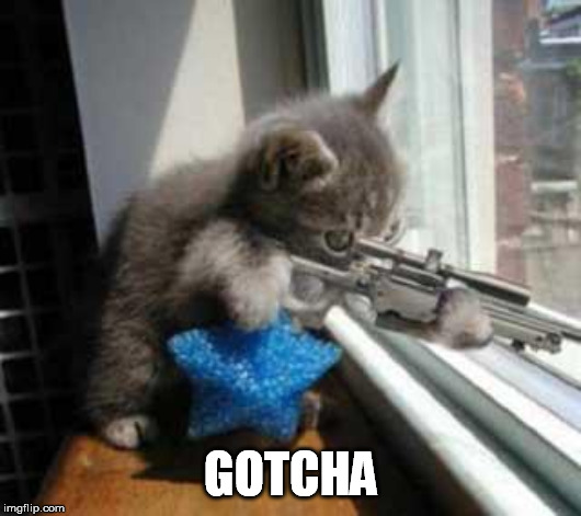 CatSniper | GOTCHA | image tagged in catsniper | made w/ Imgflip meme maker
