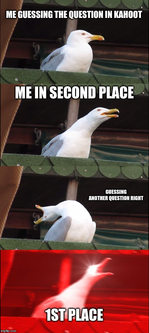 Inhaling Seagull Meme | ME GUESSING THE QUESTION IN KAHOOT ME IN SECOND PLACE GUESSING ANOTHER QUESTION RIGHT 1ST PLACE | image tagged in memes,inhaling seagull | made w/ Imgflip meme maker