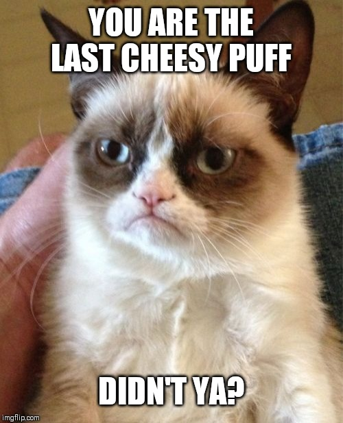 Grumpy Cat | YOU ARE THE LAST CHEESY PUFF DIDN'T YA? | image tagged in memes,grumpy cat | made w/ Imgflip meme maker