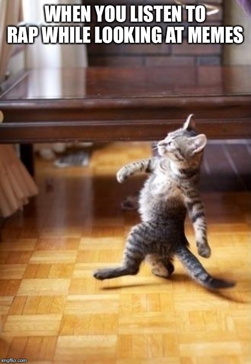 Cool Cat Stroll Meme | WHEN YOU LISTEN TO RAP WHILE LOOKING AT MEMES | image tagged in memes,cool cat stroll | made w/ Imgflip meme maker