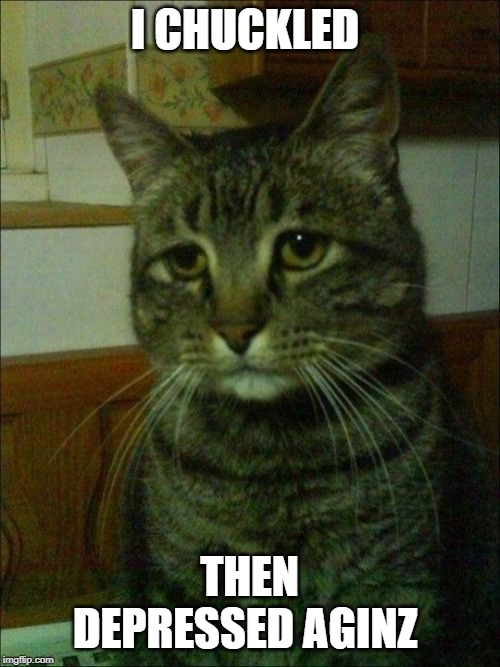 Depressed Cat Meme | I CHUCKLED THEN DEPRESSED AGINZ | image tagged in memes,depressed cat | made w/ Imgflip meme maker