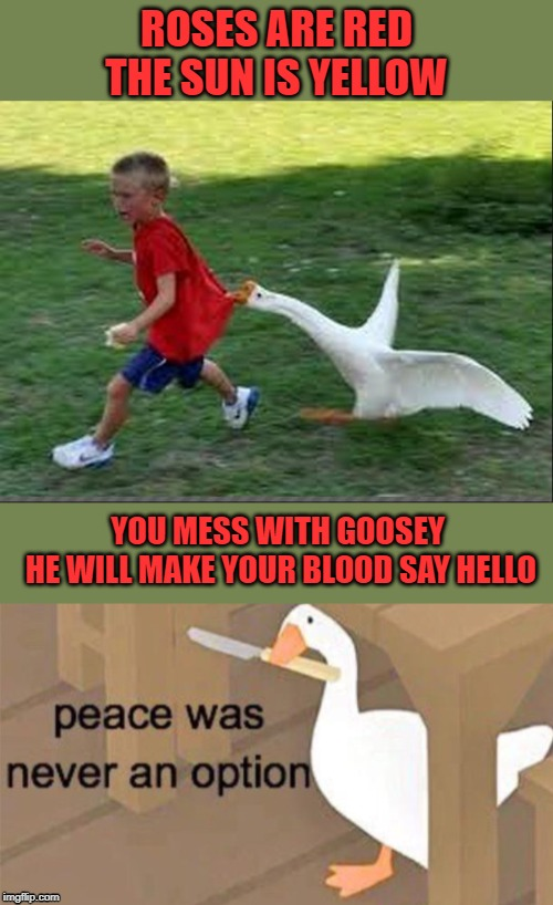 Dont mess with the goosey | ROSES ARE RED THE SUN IS YELLOW YOU MESS WITH GOOSEY  HE WILL MAKE YOUR BLOOD SAY HELLO | image tagged in goose chase,untitled goose peace was never an option,goosey,lol,fun,funny memes | made w/ Imgflip meme maker