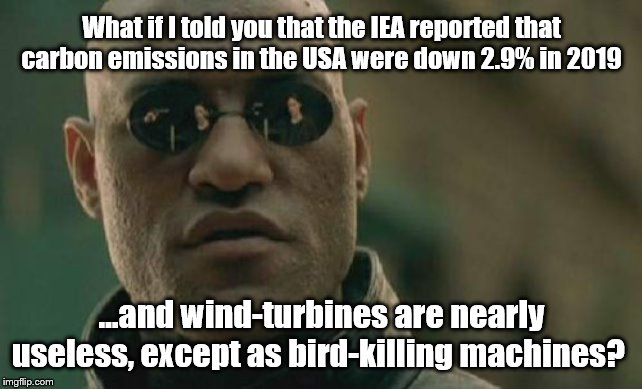 Uh-huh. |  What if I told you that the IEA reported that carbon emissions in the USA were down 2.9% in 2019; ...and wind-turbines are nearly useless, except as bird-killing machines? | image tagged in matrix morpheus,climate change | made w/ Imgflip meme maker