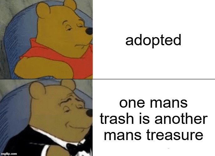 Tuxedo Winnie The Pooh Meme | adopted one mans trash is another mans treasure | image tagged in memes,tuxedo winnie the pooh | made w/ Imgflip meme maker