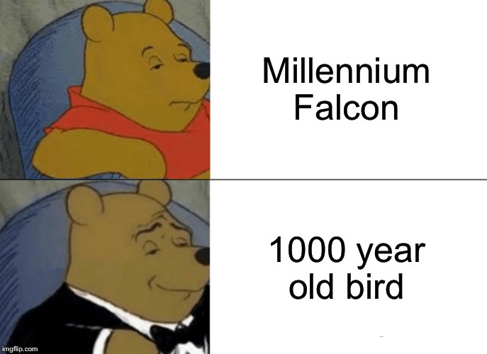 Tuxedo Winnie The Pooh | Millennium Falcon 1000 year old bird | image tagged in memes,tuxedo winnie the pooh,funny,funny memes,star wars,millennium falcon | made w/ Imgflip meme maker