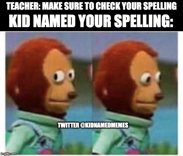 I guess you should not check him | TEACHER: MAKE SURE TO CHECK YOUR SPELLING KID NAMED YOUR SPELLING: TWITTER @KIDNAMEDMEMES | image tagged in side eye teddy,meme,memes,funny | made w/ Imgflip meme maker