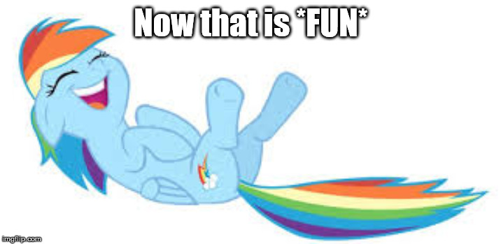 Rainbow Dash ROFL | Now that is *FUN* | image tagged in rainbow dash rofl | made w/ Imgflip meme maker